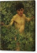 boy-in-bush