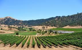 0-vineyards2